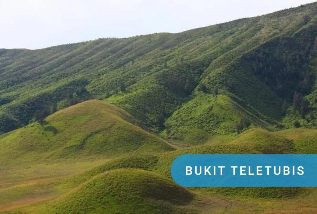 savana / bukit teletubbies