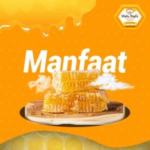 manfaat madu sarang